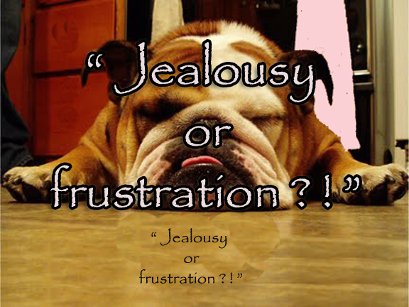 frustrated of course jealous not really 188 hugh low street ipoh