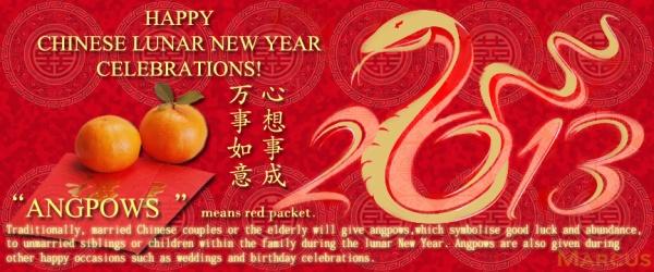Happy Snake New year 2013